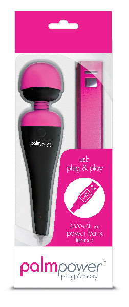 PalmPower Massage Wand Plug & Play USB