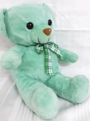 Teddy Bear Soft Toy - 15 inches - Green - Plush Toy - SharePyar
