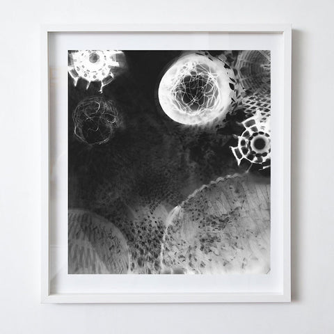 Photogram V, 2000. Suzy Kunz