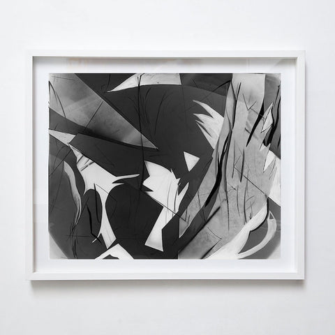 Photogram II, 2000. Suzy Kunz