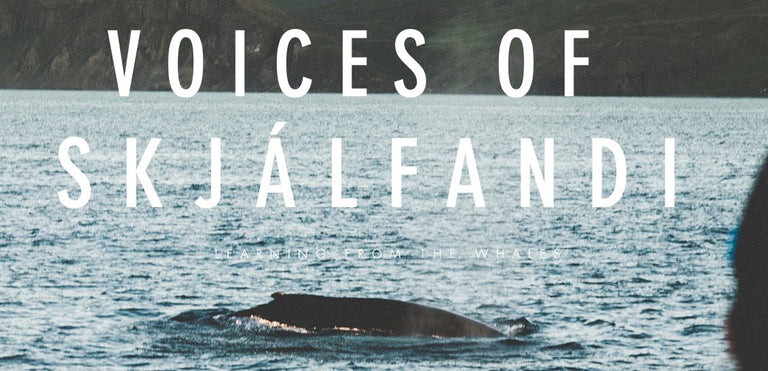 Voices of Skjalfandi