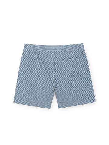 TWOTHIRDS Mens Boardshorts: Indah - Blue back