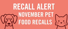 November Pet Food Recalls