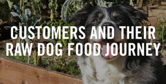 Customers And Their Raw Dog Food Journey
