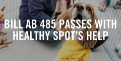 Bill AB 485 Passes With Healthy Spot's Help