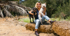 How Raw Food Changed 4 Pup's Lives