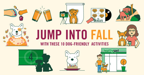 10-Things-To-Do-With-Your-Pup-This-Fall-Healthy-Spot