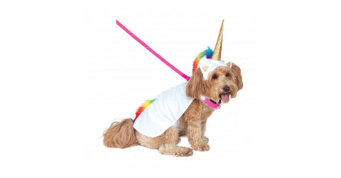 Rubie's-Unicorn-Dog-Costume-Popular-At-Healthy-Spot