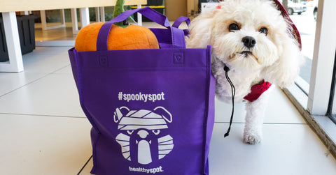 Healthy-Spot-Grooming-Spooky-Spot-Special-Spend-$60-Get-Halloween-Tote