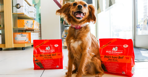 Stella-&-Chewy's-Great-For-A-Fresh-Start-To-Your-Dog's-Food