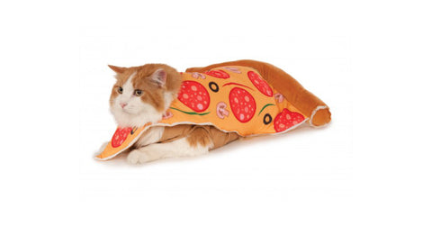 Rubie's-Pizza-Slice-Pet-Halloween-Costume-Sold-At-Healthy-Spot