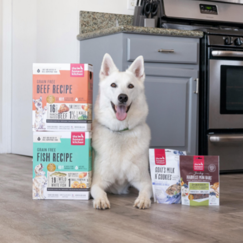 White husky smiling with The Honest Kitchen dehydrated dog food and treats.
