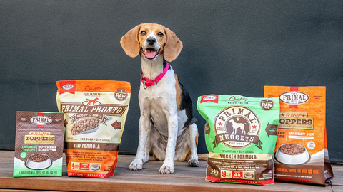 dcm-grain-free-pet-food