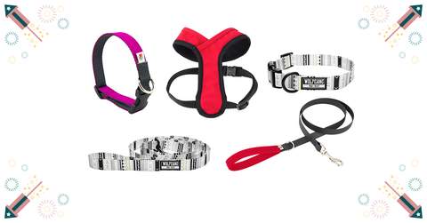 20%_Off_all_Collars_leashes_Harnesses_at_Healthy_Spot_July_Promos