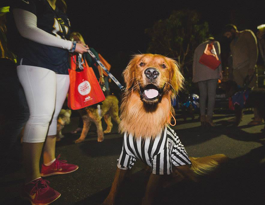 Howl-O-Ween Photo Contest