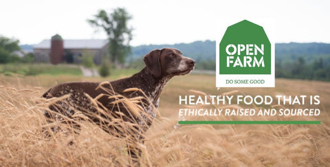 Open Farm Ethically Raised And Sourced Farm To Table Pet Food Healthy Spot