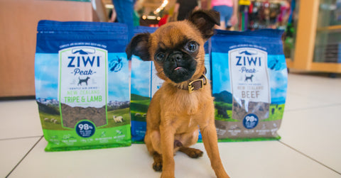 Ziwi-on-Sale-At-healthy-Spot-Los-Angeles