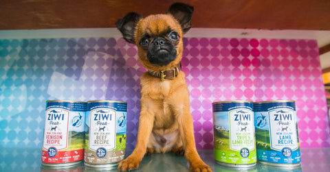 Ziwi-Cans-On-Sale-At-Healthy-Spot