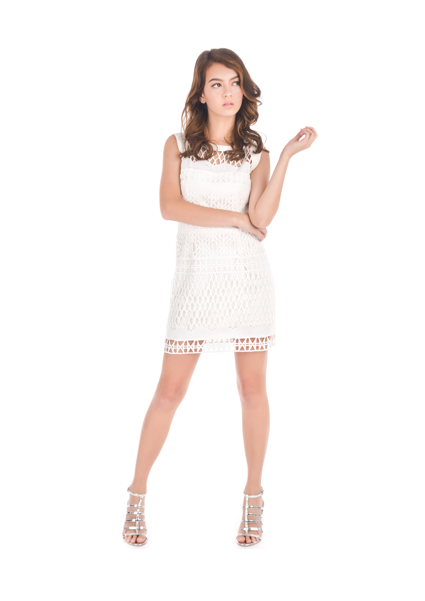Caroline Embroidered Mini Dress (White) - Moxie