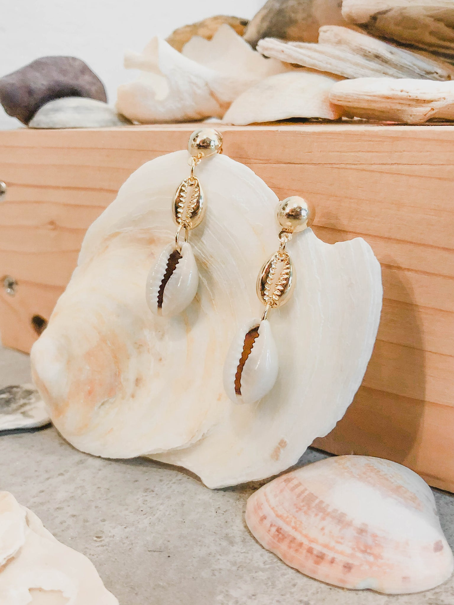 Seashell Danging Earrings