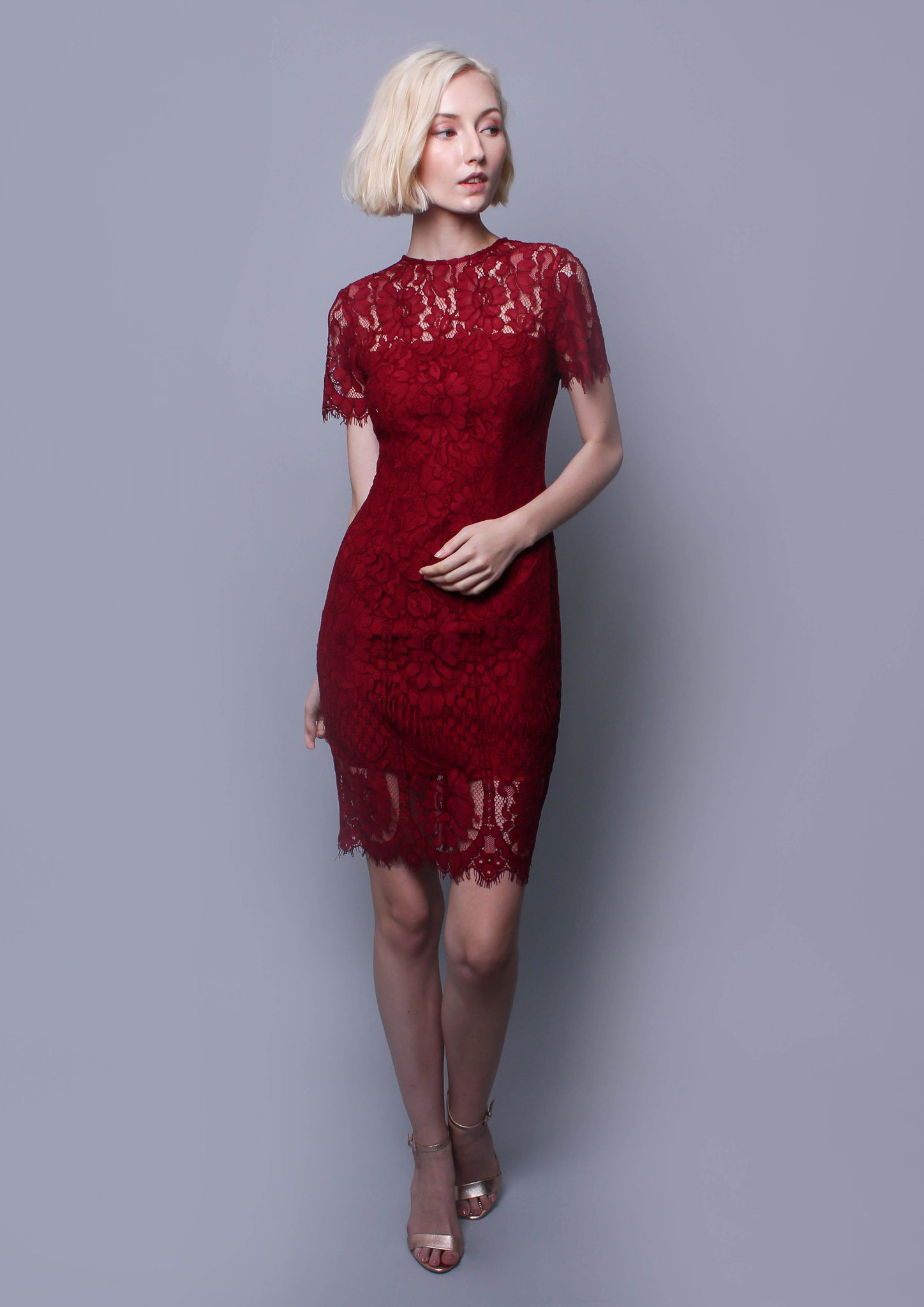 Coretta Lace Pencil Dress (Wine)