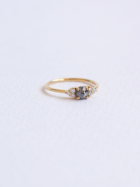 One-of-a-kind Companion Ring - Salt & Pepper Diamond Center in 18k Gold
