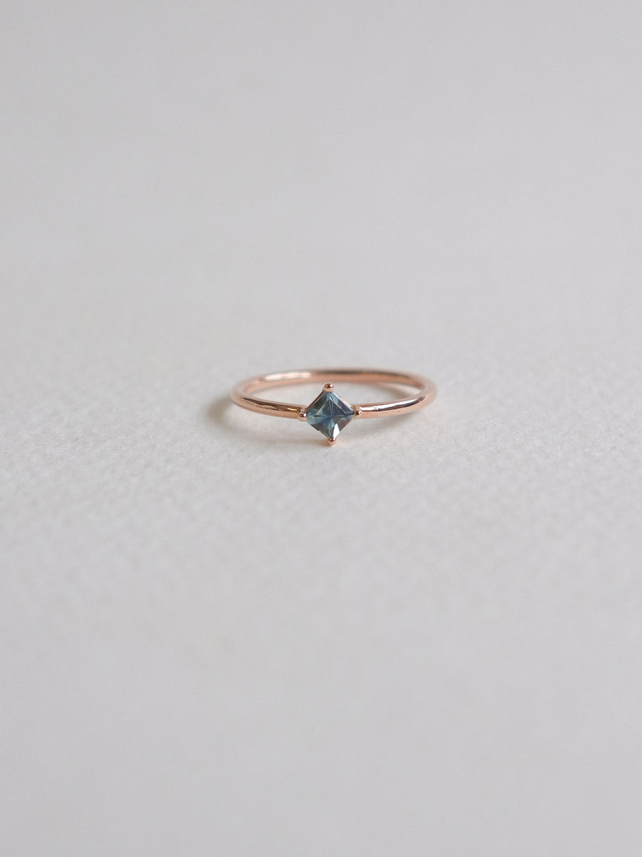 One-of-a-Kind Compass Ring - Parti Sapphire in 18k Rose Gold