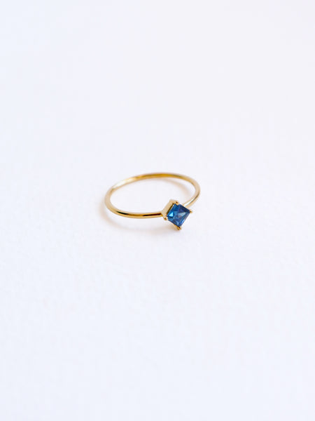 One-of-a-kind Compass Ring - Princess Cut Parti Sapphire in 18k Gold