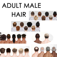 ADULT MALE HAIR PDF