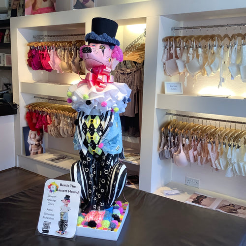 haslemere hound at surrey lingerie boutique