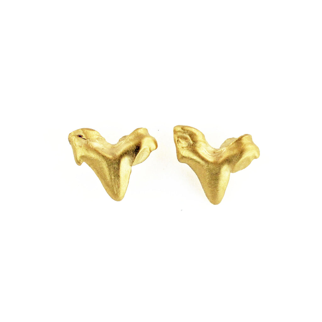 Little Husky Tooth Stud Earrings