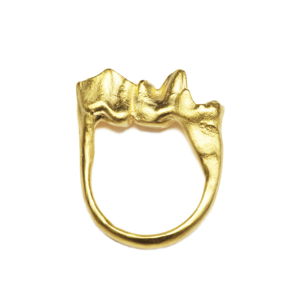 Ram and Fox Tooth Molar Ring