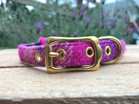 'Harris Tweed' Dog Collar - Pink & Purple - Solid Brass