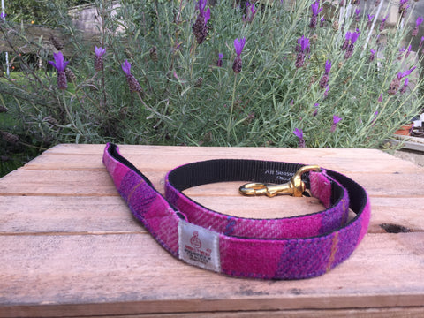 'Harris Tweed' Dog Lead -  Pink & Purple - Solid Brass