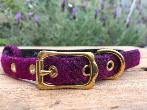 'Harris Tweed' Dog Collar - Fushia - Solid Brass