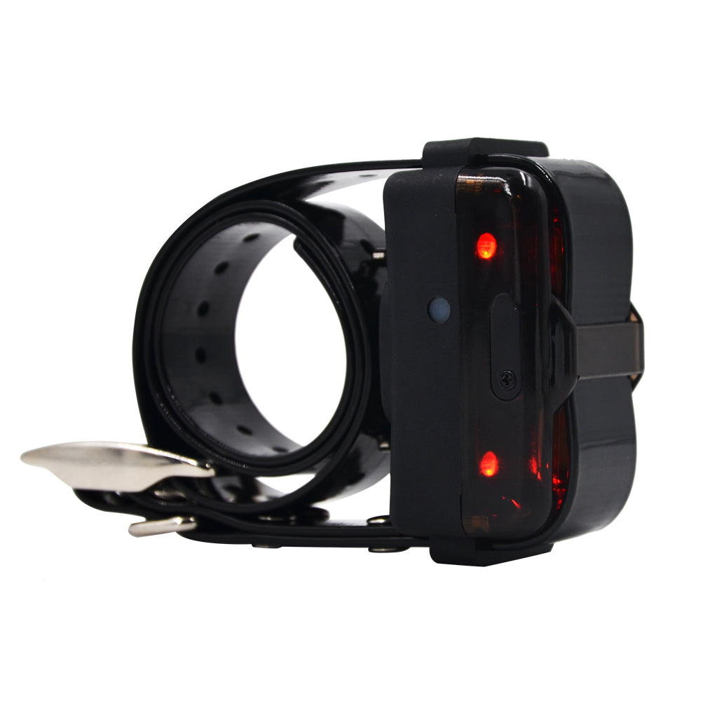 1200M Remote Dog Hunting Training Collars Vibration Beep Collar For Dogs IP7 Waterproof Charging
