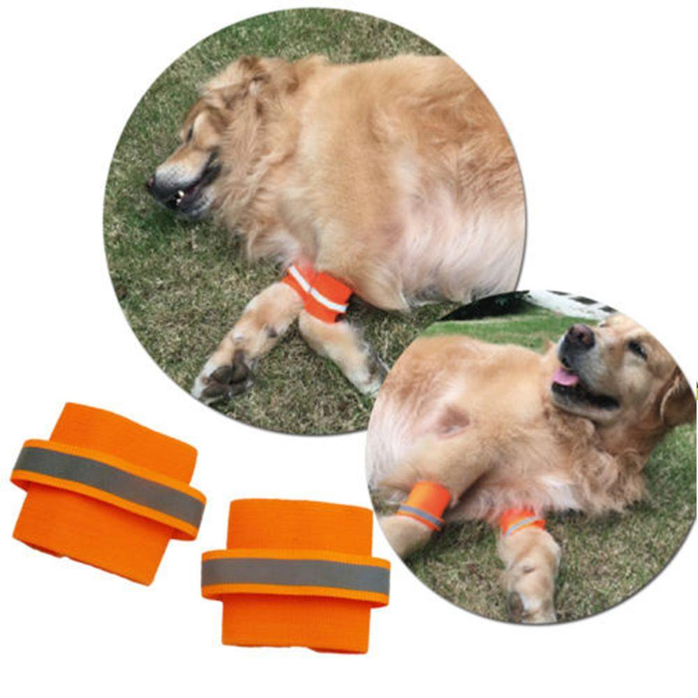 1Pair pet supplies Fluorescent Dog Wrist feet Protecting Dog Walking at Night Safety Bracers pets acessorios Dogs Wrist Bands