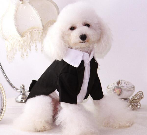 1pcs dogs cats cool fashion bowknot wedding dress suit doggy wedding tuxedo costume puppy jackets pet dog cat coats clothes
