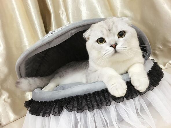 1pcs dogs cats lovely princess lace house doggy autumn winter beds supplies puppy warm soft kennels pet dog cat nest accessories
