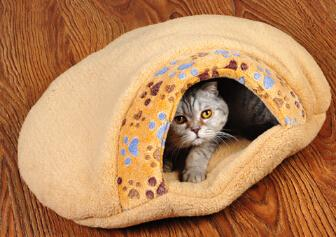1pcs dogs cats warm soft bed autumn winter doggy kennels pet dog cat Small footprints litter puppy nest house pets products