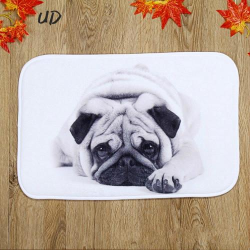 2017 new Nature Rubber Area Rugs Outdoor Mats Bathroom Home Owl Dog Cat Pattern Mats Anti Slip Maps Anti-Bacteria Rugs