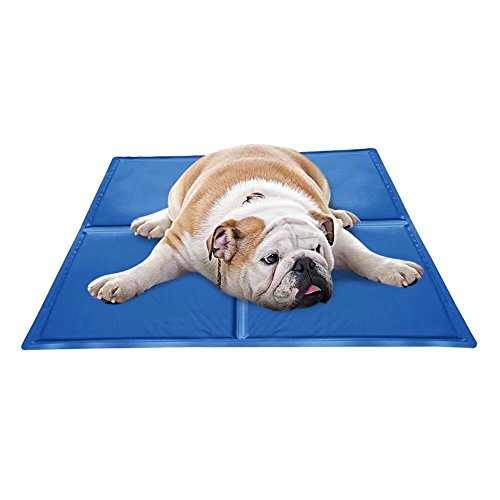 Forestpaw Cooling Pet Mat Dog Beds Cold Cooler Cool Gel Pad Comfort for Kennels Crates,Small Medium Large Dogs,Blue