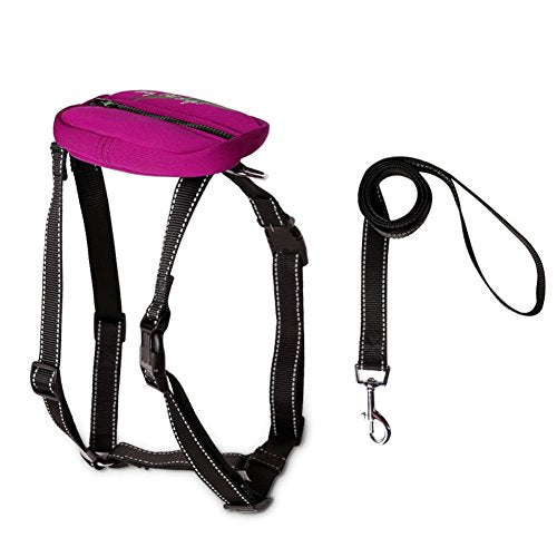SK Studio Pets' Adjustable Vest Harnesses Big Dog Rope Dog Leash Perfect for Daily Training Walking Running