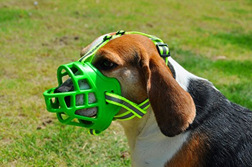 Mihqy Silicone Dog Muzzle- Anti Bark Bite Dog Mouth Mask- Adjustable, Soft Rubber Basket, Breathable,for Small Medium Large Dog-Green,Size 2