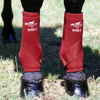 Professionals Choice Equine Smbii Leg Front Boot, Pair (Small, Black)