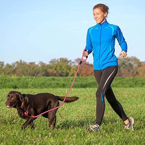 Ladoogo Heavy Duty Dog Leash with Padded Handle 5 ft Long Dog Training Walking Leashes for Medium Large Dogs (Pink)