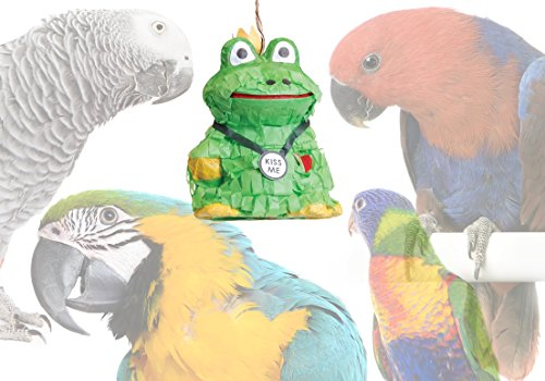 """Fill-A-Treat"" Bird Foraging Toy Piñatas: It's a Toy … It's a TREAT! (Frog Prince)"