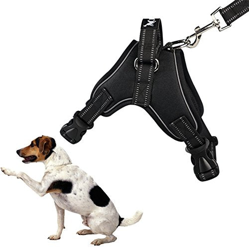 Kayi Pet Harness Chest Strap Auxiliary Tools With