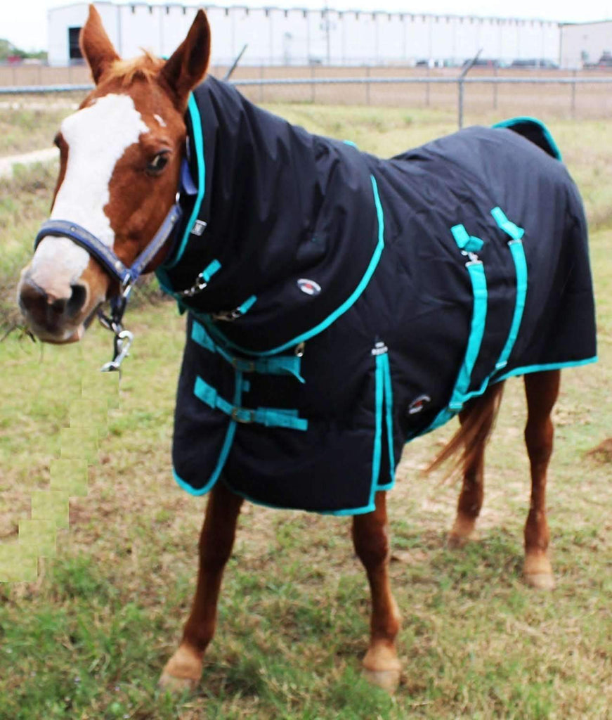 "74"" 1200D Turnout Waterproof Horse Heavy WINTER BLANKET Neck Cover Combo,,KeeboVet Veterinary Ultrasound Equipment,KeeboVet Veterinary Ultrasound Equipment."