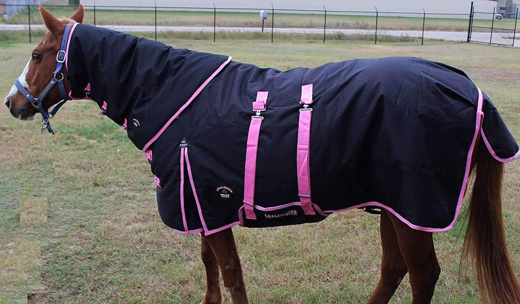 "74"" 1200D Turnout Waterproof Horse WINTER BLANKET HEAVY WEIGHT Belly Band Black 569Combo,,KeeboVet Veterinary Ultrasound Equipment,KeeboVet Veterinary Ultrasound Equipment."
